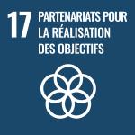 Objectifs de Développement Durable, ODD 17 : partenariats pour la réalisation des objectifs